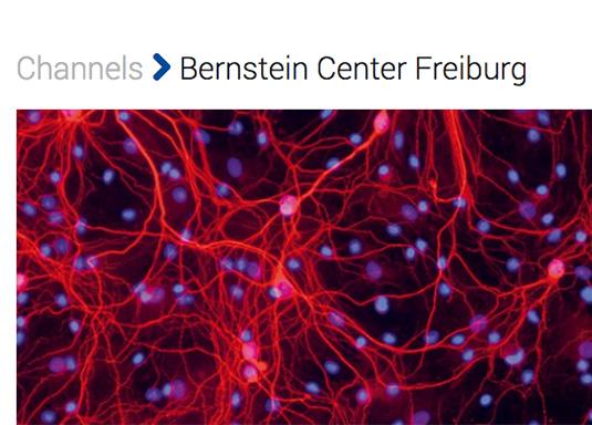 Bernstein Center Freiburg | Channel Videoportal Uni Freiburg