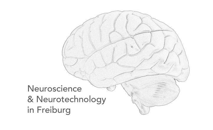 Neuroscience and Neurotechnology in Freiburg