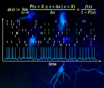 Finding the right measure: New study allows a more reliable measurement of neuronal interactions