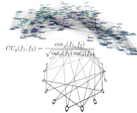 Understanding complex relationships: Scientists from Freiburg show how global properties of networks become apparent in local characteristics