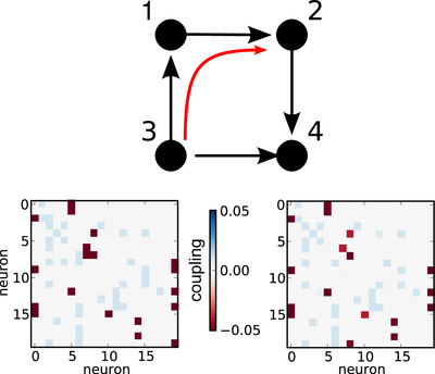 Reconstructing networks from spike train data: For networks with sparse connectivity, the underlying structure can be inferred from measured correlations