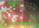 Inhomogeneities in network structure govern spontaneous activity