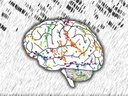 The space-time fabric of brain networks | From space to space-time in the brain