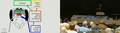 181210-Videothumb.jpg