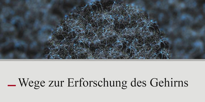 Ringvorlesung WS 2018/2019 - Bernstein Center Freiburg